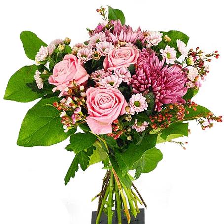 klangs blommor uppsala